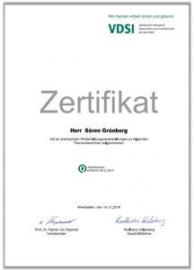 VDSI Weiterbildungsnachweis 2017 Sören Grünberg